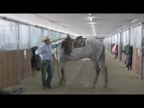 Putting on a western saddle with ease