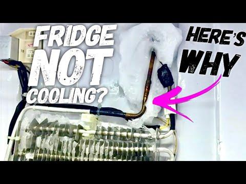 BYOT #11 - DIY:  How To Fix A Noisy Fridge