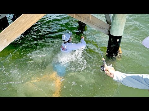 Massive Bait Catch with Surprise Cobia & Snook in Tampa Bay