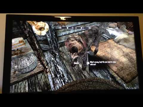 Skyrim- How to get rid of a lost follower