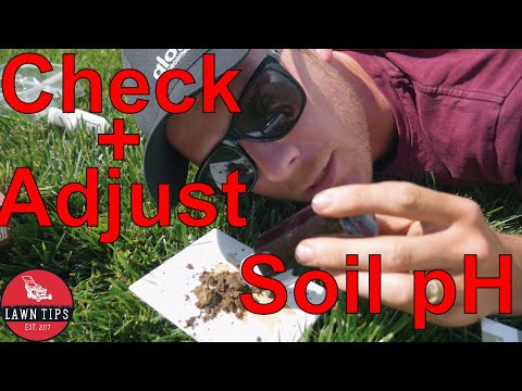 How To Test Soil pH In Lawns