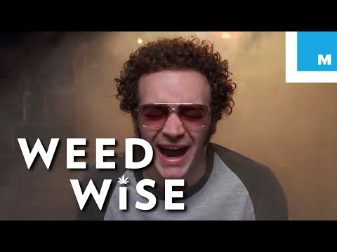 Is Cannabis A Gateway Drug? - Weedwise