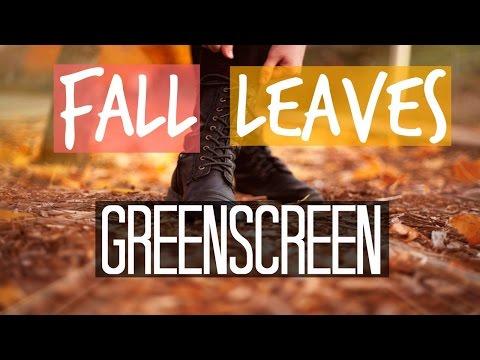 Fall Leaves GreenScreen #1 | Jasmine