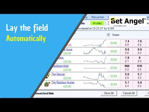 Betfair Trading - strategies - Lay the field - Automatically - Peter Webb