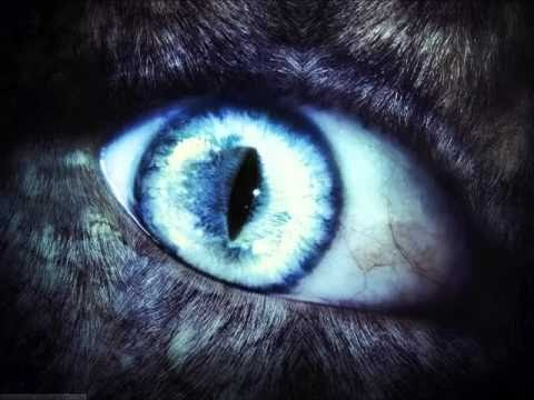 Werewolf Spell (tested)