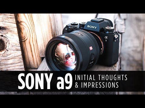 Sony a9 Initial Thoughts