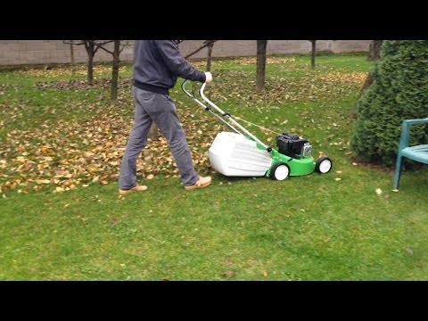 Mowing the lawn & Cleaning the leaves with Viking MB 248 T