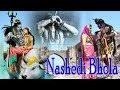 नशेड़ी भोला || NASHEDI BHOLA || SHIV BHOLE BHAKTI SONG || DAK KAWAD BHAJAN ||ASHISH JATU & RENU