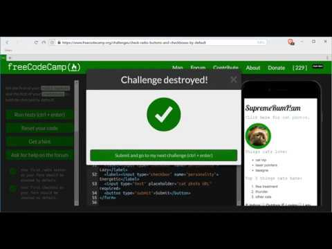 Check Radio Buttons and Checkboxes by Default- freeCodeCamp HTML5 and CSS lesson #33
