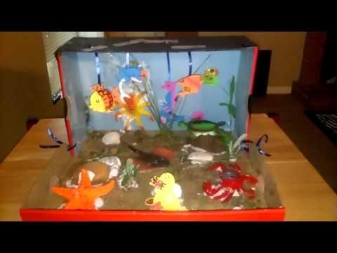 Shoebox Sea Life Habitat