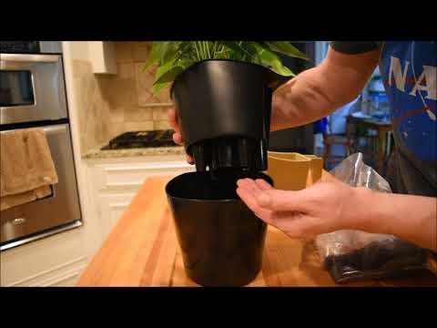 Aquaphoric Self-Watering Pots