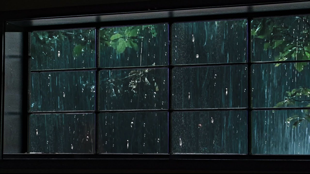 Rain On Window to Sleep Instantly, Heavy Rainstorm & Thunder Sounds in Forest at Night for Sleeping