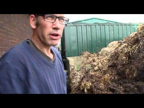 Collecting horse manure