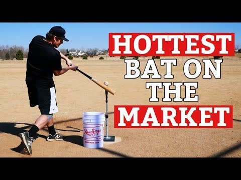 What Is The BEST and HOTTEST Baseball Bat Right Now?