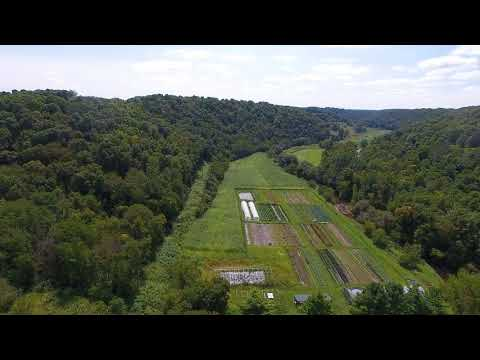 4BR 3BA home on 36.5 Acres for sale WI - organic veggie farm - video 3 of 3