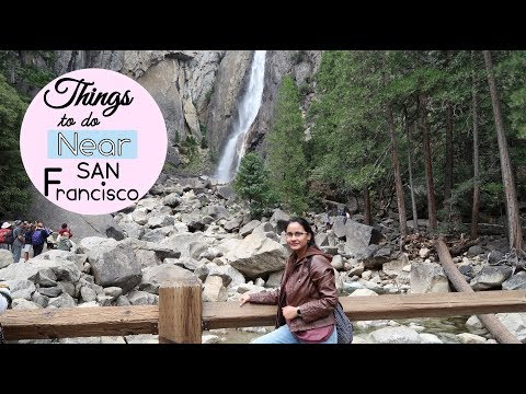 Things To Do Near San Francisco | Muir woods, Wine County, Yosemite National Park