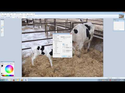 Reducing image size with paint.net.wmv