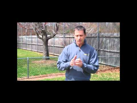 How to Fix Your Dead, Burnt Out Grass This Spring & Fall After So Little Rain