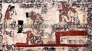 Bí ẩn Kim Tự Tháp của người Maya | Khám phá thế giới (Thuyết Minh)