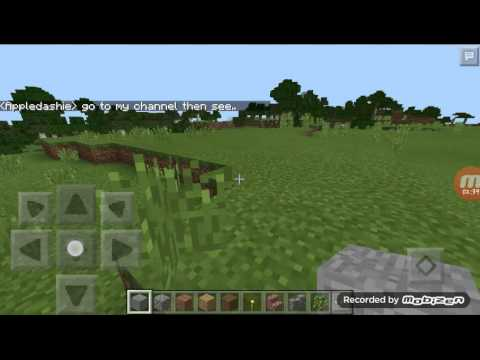 Minecraft PE - How To get a color name item