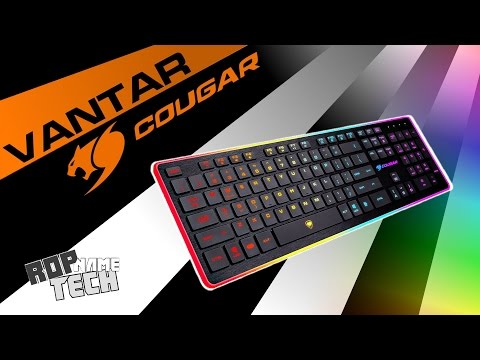 Unboxing & Review - Cougar Vantar RGB Budget Keyboard