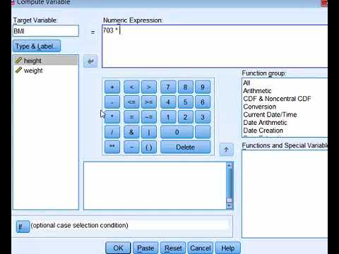 SPSS   Compute Variable BMI Example
