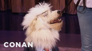 Halloween Costumes For Pets  - CONAN on TBS