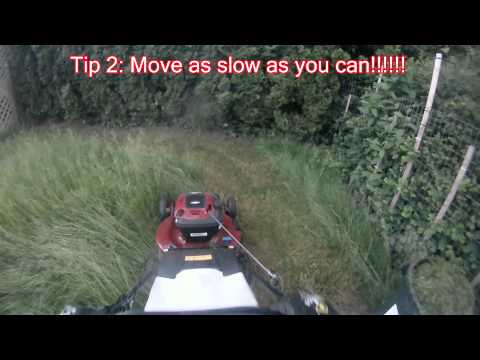 Tips on how to cut tall grass