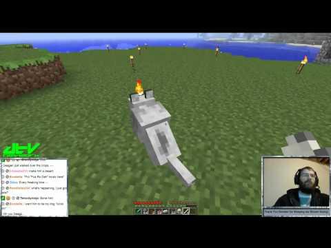 Minecraft - Dog Attack