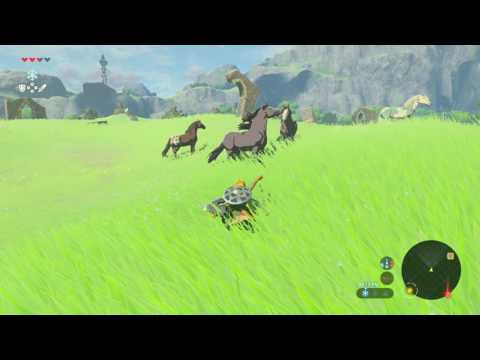 The Legend of Zelda: Breath of the Wild - How to Catch a Horse