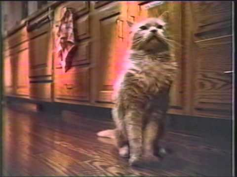 1984 Meow Mix cat food from PURINA Commercial