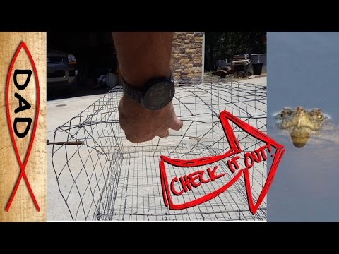 Snapping turtle trap - catch the big one!
