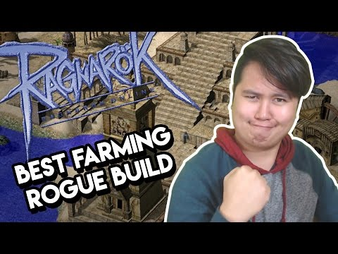 Ragnarok Online - Best build to farm with Rogues - Ask Dee
