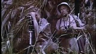 Liane Jungle Goddess 1956 Full Movie
