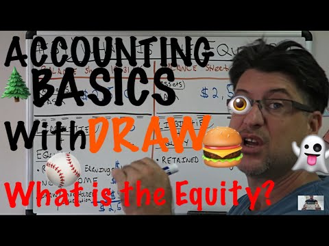 Accounting for Beginners #39 / What is the Equity / Balance Sheet / Shareholder Distribution