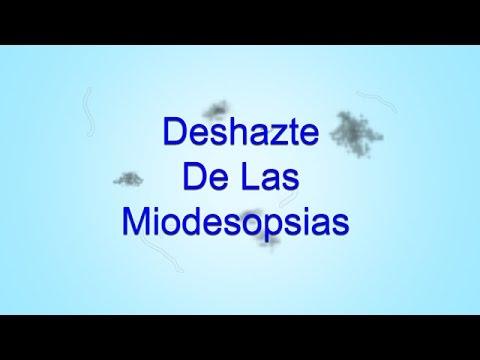 Deshazte De Las Miodesopsias (Moscas Volantes) Subliminal