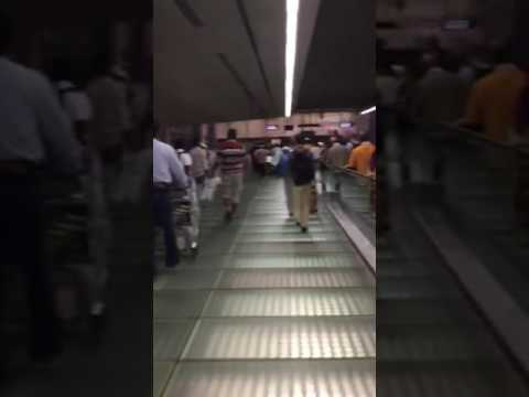 Changi Airport T2 small fire, staffs/ passengers walking on link bridge to T3 ( 1).