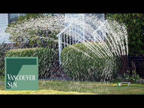 Vancouver watering restrictions start May 1 | Vancouver Sun