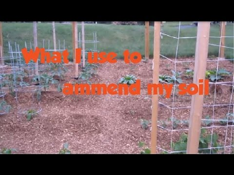 How I ammend my soil and what I use to enrich my garden