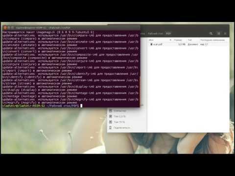 Как конвертировать PDF в JPG Ubuntu 16.04. ImageMagick