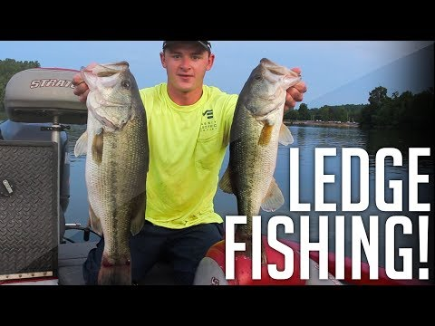 Ledge Fishing For HUGE BASS! || The Famous Tennessee River Ledges
