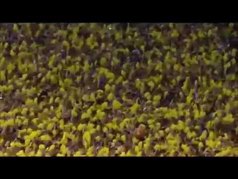 The University of Michigan Wolverines Football 2014 Team 135 Hype