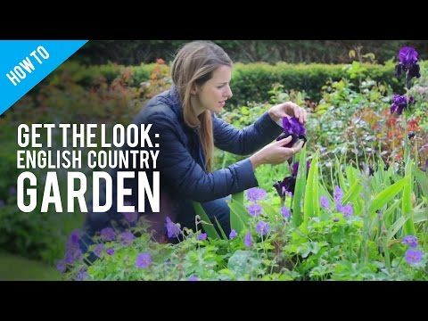 Plants For An English Country Garden