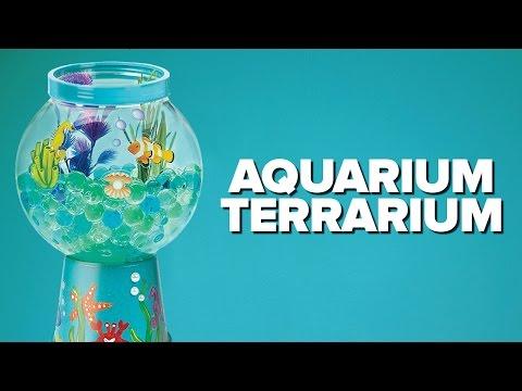 Aquarium Terrarium by Creativity for Kids