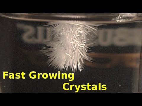 Fast Growing Crystals in Sodium Acetate