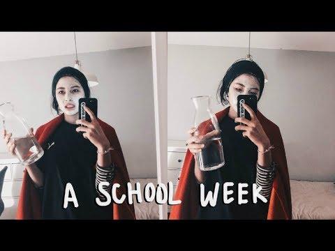 A School Week in my Life //15