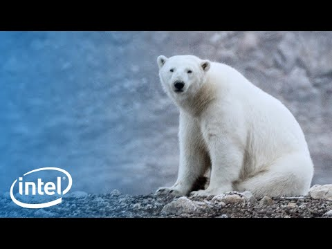 Above the Arctic: An Intel Drone Expedition | Intel