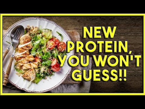 NEW PROTEIN SOURCE! You won't Guess!