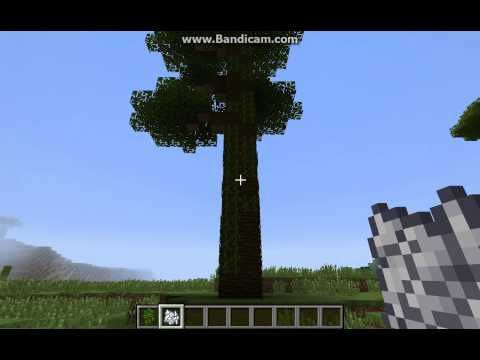 How to make a giant jungle tree in Minecraft