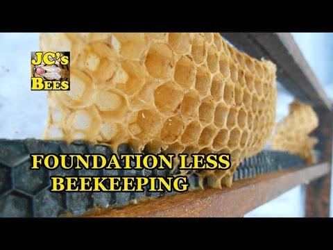 Setting Up Foundation Less Frames For Honey